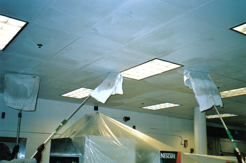 Cleaning the ceiling tiles and grid. - Ceiling Cleaning Pictures